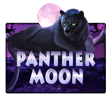 918Kiss Panther Moon